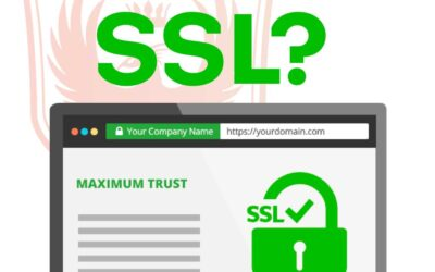 What is SSL?